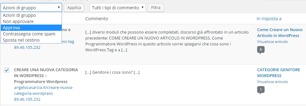 gestire-commenti-su-wordpress-approva-commento