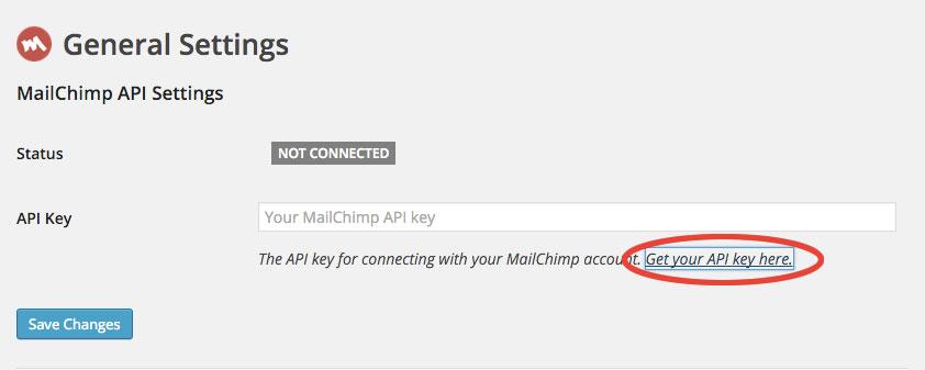 Mailchimp : ottenimento API